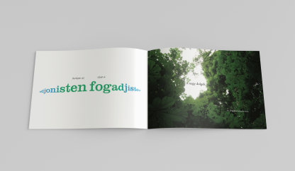 Editorial design, Book of Hungarian Proverbs, 2014, IV