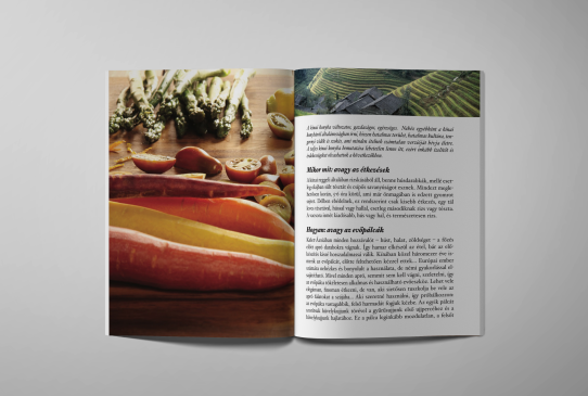 Editorial design, Recipes from the world, 2015, II